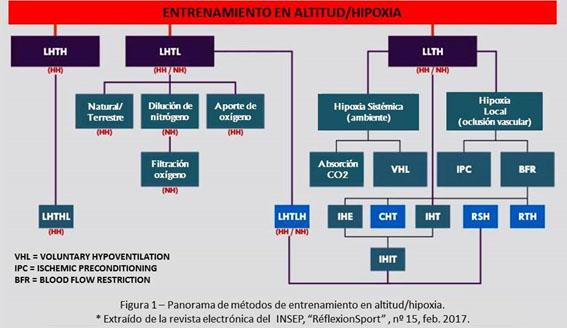 Cuadro de la terminología clave del entrenamiento en altitud