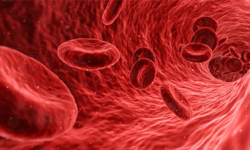 Elevación de Hematocrito y Regulación del Estímulo Hipóxico Adecuado en Ciclo de Hipoxia Normobárica Intermitente Nocturna