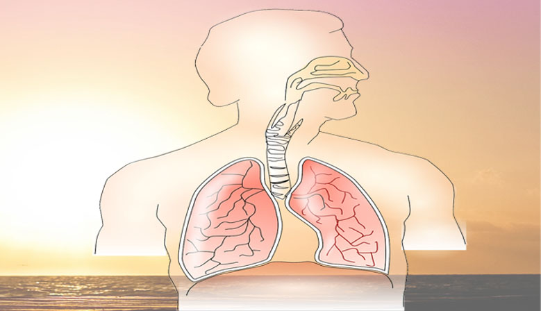 Imagen de la noticia efectos hipoxia en problemas cardiorrespiratorios y en mayores