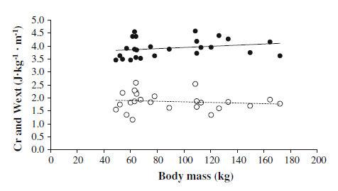 Requerimientos energéticos y mecánicos en los corredores y la influencia del peso corporal