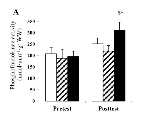 El Entrenamiento Interválico del Sprint en Hipoxia Estimula la Actividad Enzimática Glucolítica.