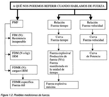 fuerza bases programacion rendimiento entrenamiento fisico musculacion halterofilia